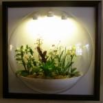 Я бы хотел попытаться выращивать орхидеи под искуственным освещением. Какой тип светильников и лампочек вы рекомендуете мне попробовать?