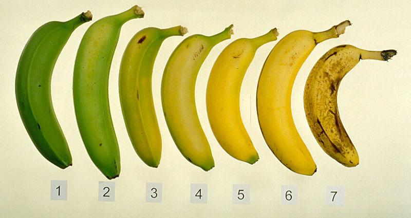 Как сделать чтобы бананы дозрели быстрее