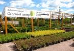 питомник садовых растений