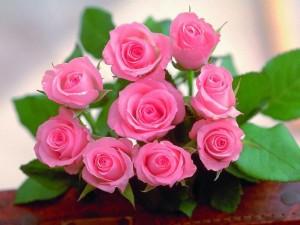 Как правильно выбрать розы