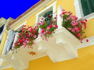 Оригинальное оформление балконов цветами